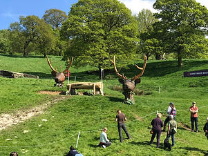 chainsaw carvings deer heads chatsworth david evans jumps