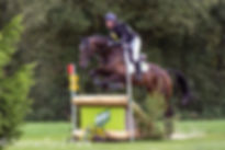 somerford park farm horse trials