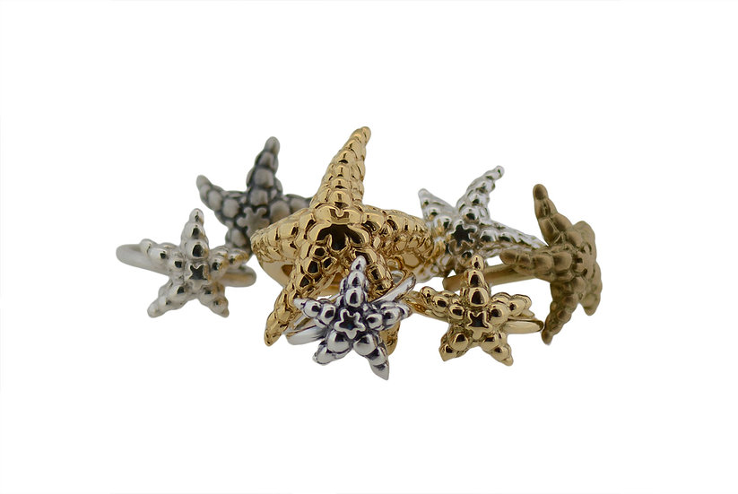 Ring Seastar // middle