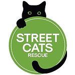 Street Cat Rescue.jpg
