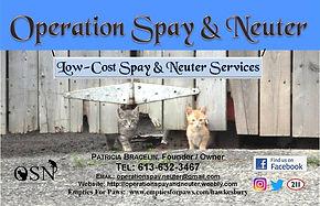 Operation Spay & Neuter.jpg