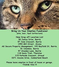 Street Cat Rescue poster.jpg