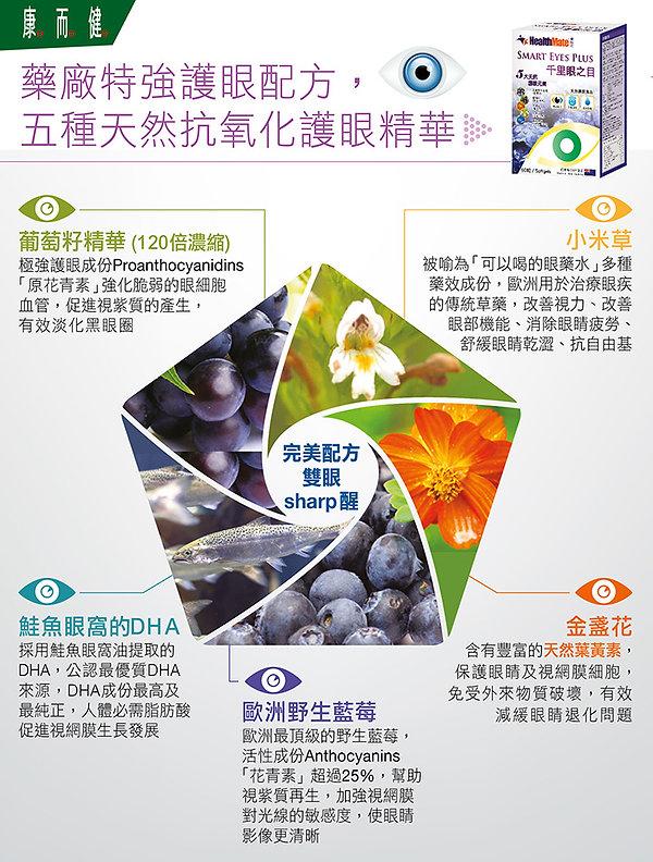 Smarteyes OnLine POP_1a.jpg