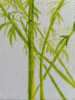 Bamboo gift