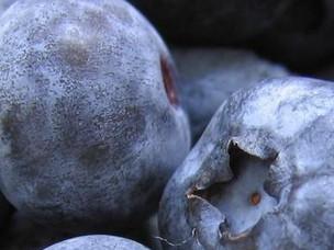 ¿Qué chingaos son los parabenes?
