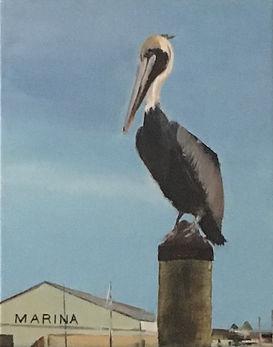Pelican Perch.jpg