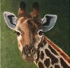 Giraffe, a Potrait.jpg