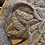 Thumbnail: Tree Relief