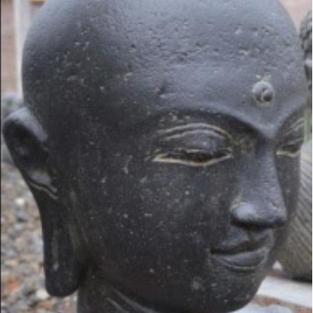Buddha Head Bald Option