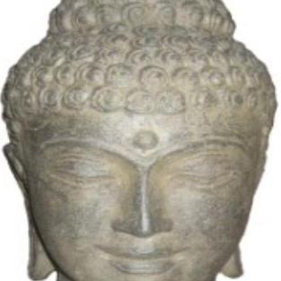 Buddha Head Option 4