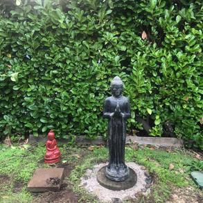 Concrete Standing Buddha