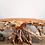 Thumbnail: Teak Root Console Table - White Wash Finish