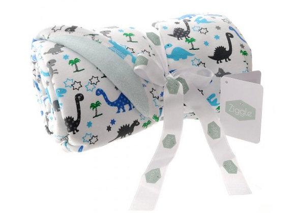 Ziggle Dinosaur blanket