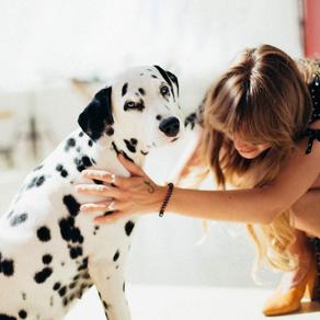 Un estudio demuestra los beneficios de la reducción del estrés al acariciar perros y gatos