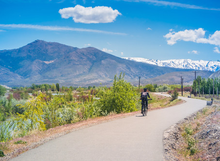 La ruta del vino en Mendoza