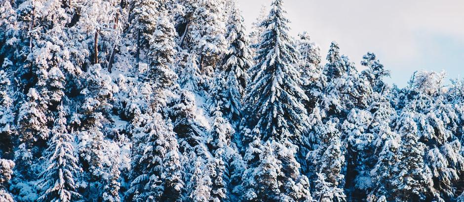 Visitá la nieve desde casa