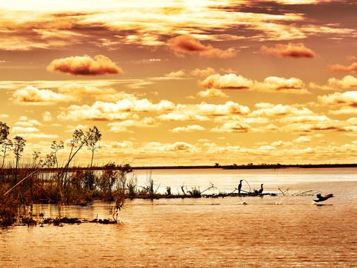Escapada de fin de semana a Corrientes: descubrí los Esteros del Iberá