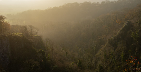 Mist over Ebbor Gorge
