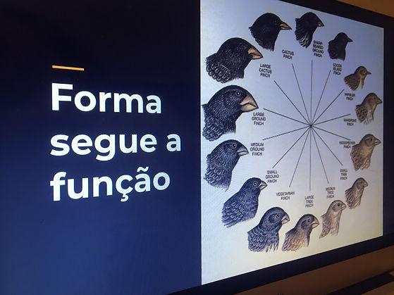 formaSegueFuncao_edited.jpg