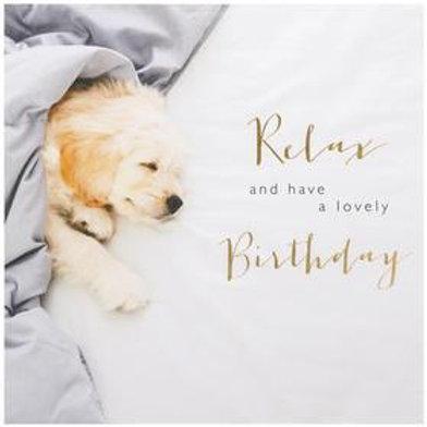 Relax Puppy Birthday Card