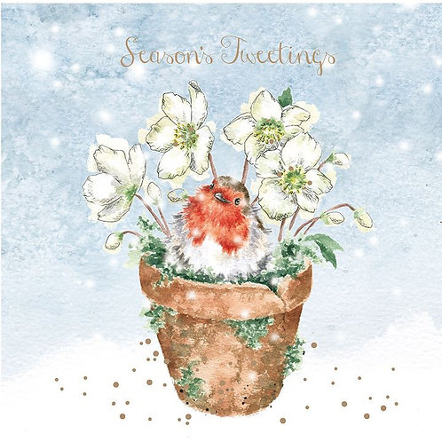 Wrendale Christmas Card Pack - Season's Tweetings