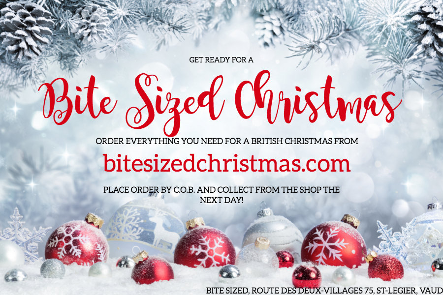 BITE SIZED CHRISTMAS.jpg