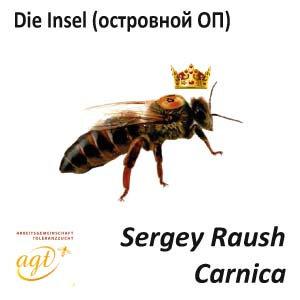 Пчеломатка Карника, островной ОП (Германия)