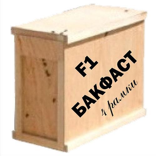 Пчелопакеты Бакфаст 3+1