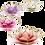 Thumbnail: Lotusblume Teelichthalter - verschiedene Farben