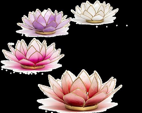 Lotusblume Teelichthalter - verschiedene Farben