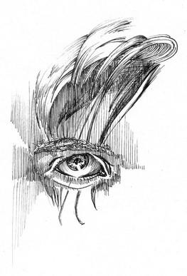 Auge-mit-Haaren.jpg