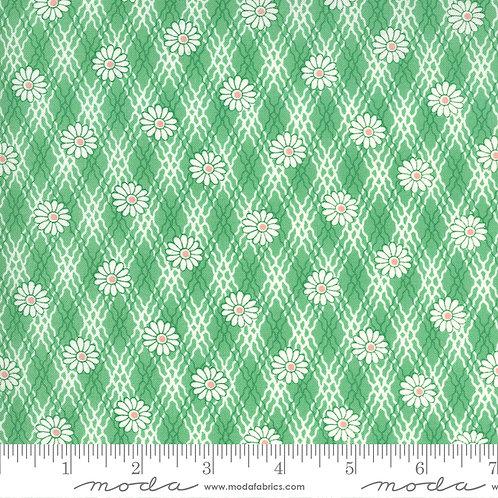 30's PlaytimeTrellis Green