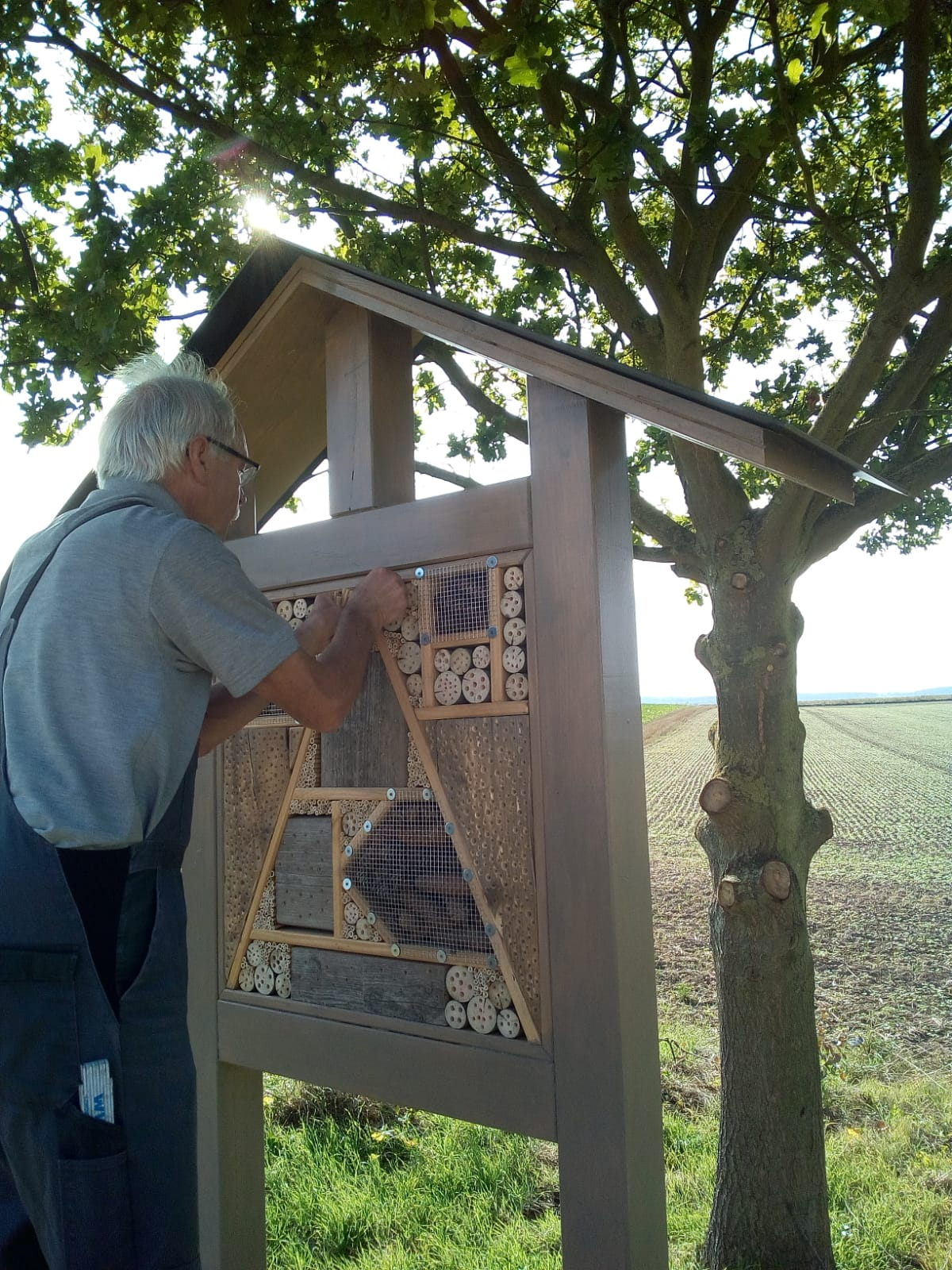 Insektenhotel befuellung