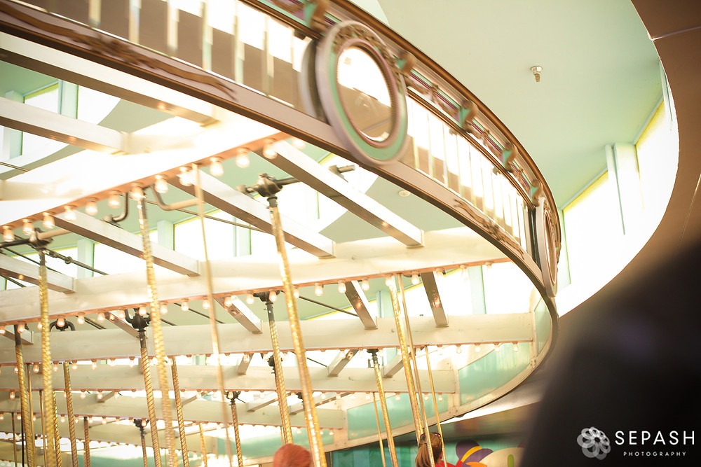 IMG_3349_SepAsh-Photography_www.sepash.com_Santa-Cruz-Wedding-Photographer_Tali-
