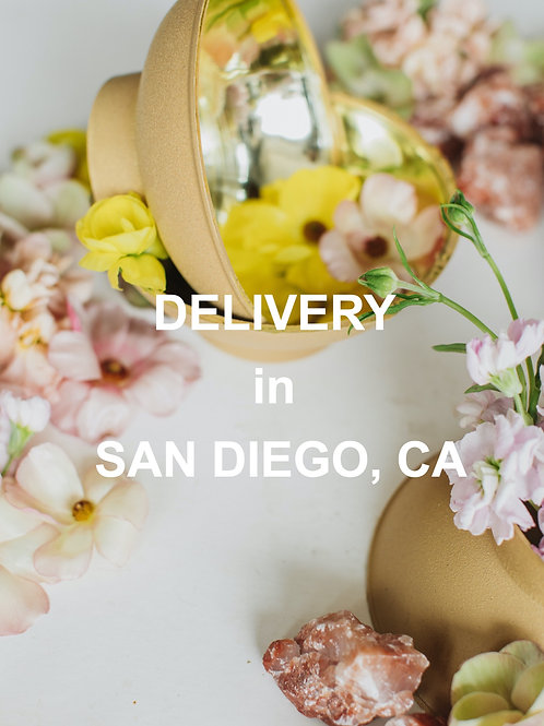 DELIVERY - SAN DIEGO