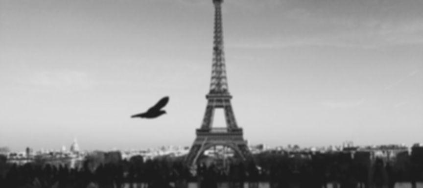 paris-ville-romantique-720x320.jpg