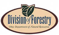 Ohio-DNR-Div-Forestry-logo.png