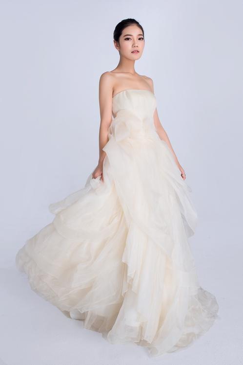 Vera wang rental wedding dresses dress fric ideas for Vera wang rental wedding dresses