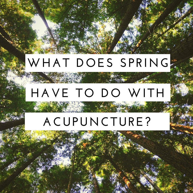 What does spring have to do with acupuncture?