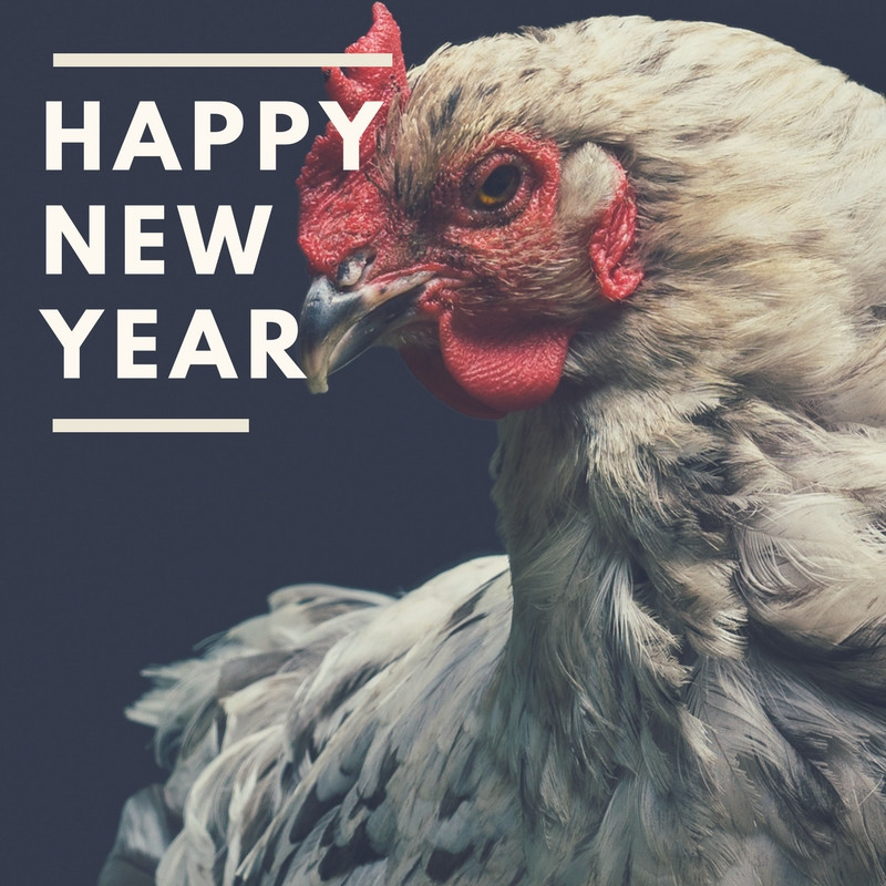 Happy Chinese New Year from your Newburyport acupuncturist!