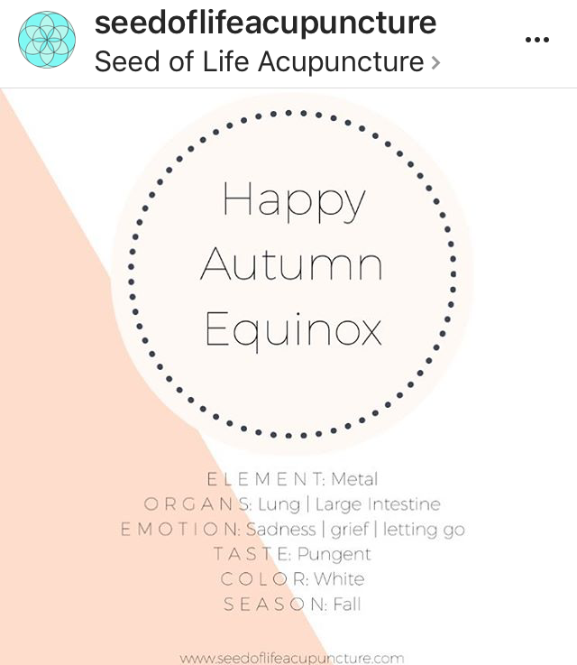 Seed of Life Acupuncture: Autumn Equinox