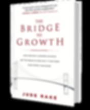 The Bridge to Growth