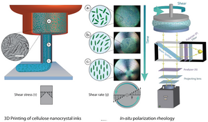 Illustrations of the direct ink writing 3D printing process (left) and in situ polarization rheology (right) used in the Empa study. Image via ACS Nano
