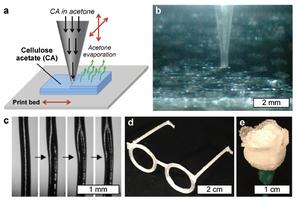 Diagram showing a) printing process b) process under a microscope c) extruded filament d) mini glasses e) mini rose. Image via Advanced Science News.