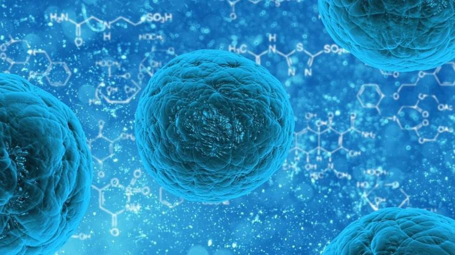 Stem cells can be used to build a brain tumour, which could help us beat it.