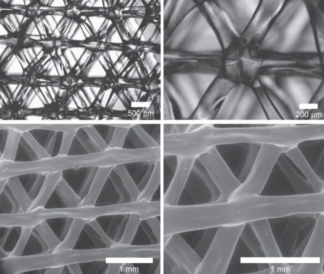 Optical and SEM images printed elastomeric scaffolds.
