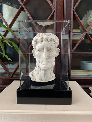 Miniature plaster bust with milk finish in display box