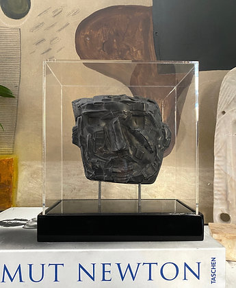 Polished ebony plaster relief in acrylic case #9
