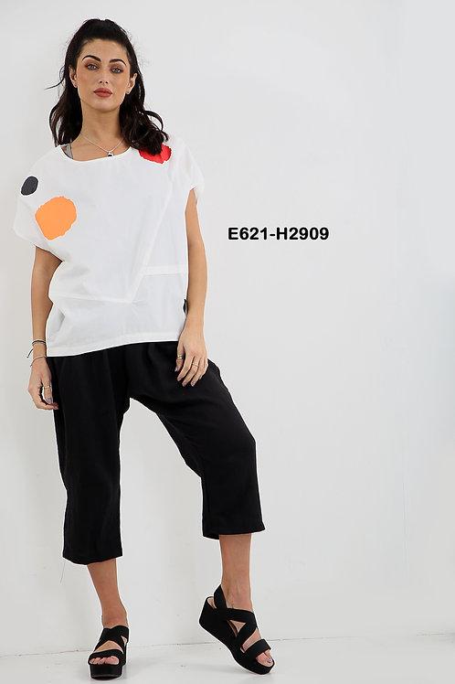 E621-H2909