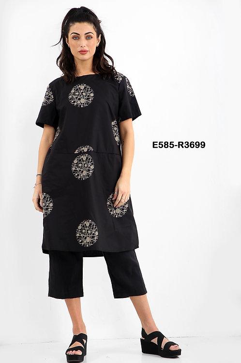 E585-R3699
